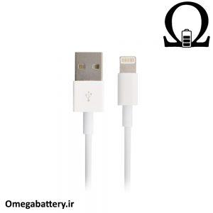 قیمت خرید کابل شارژ اصلی اپل Apple Lightning 20cm 1